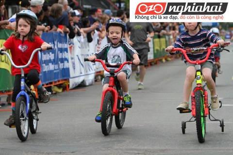 Kiến thức về xe đạp trẻ em. Xe đạp trẻ em chất lượng 3