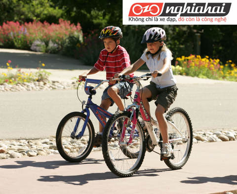 Những lỗi thường gặp trên xe đạp trẻ em và cách xử lý 1