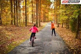 Sử dụng xe đạp trẻ em. Kiến thức về xe đạp trẻ em 2