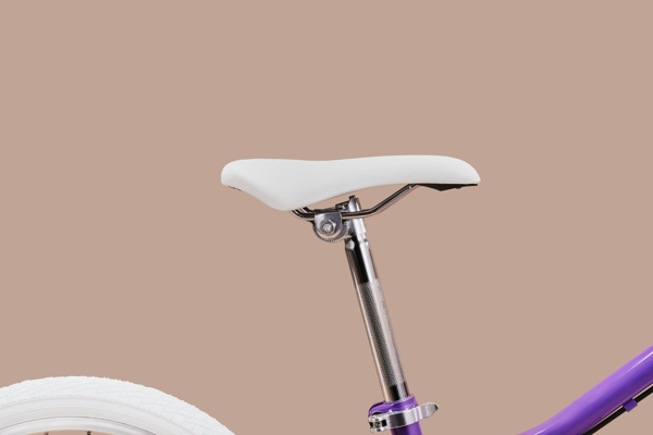 Xe đạp Trẻ em Lion Bird 10