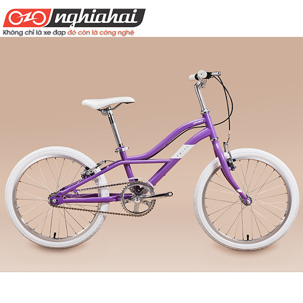 Xe đạp Trẻ em Lion Bird 3