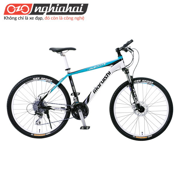 xe đạp leo núi 1
