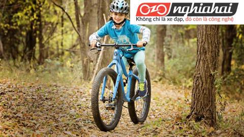 Bảo dưỡng xe đạp trẻ em. Kiến thức về xe đạp trẻ em 1