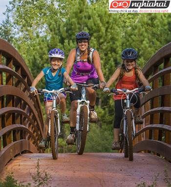 Các loại xe đạp trẻ em khung nhôm 1