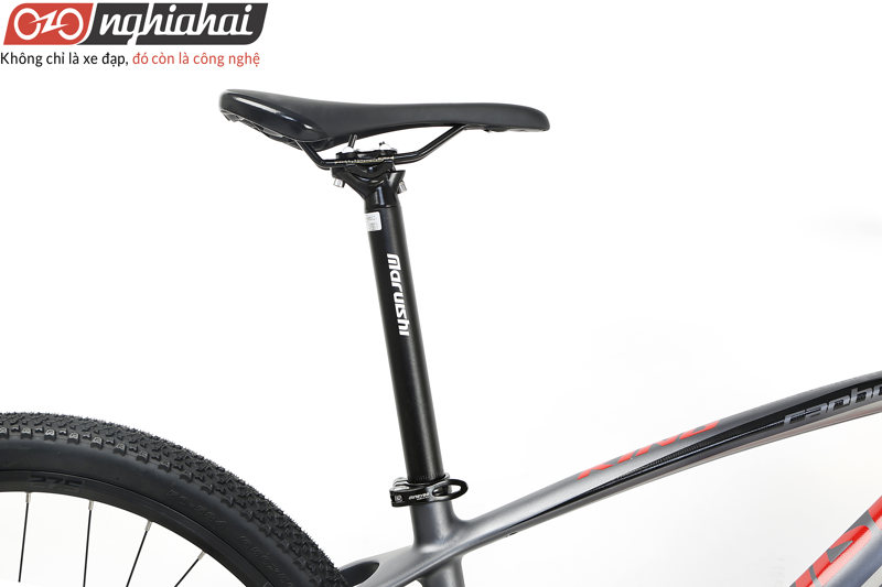 Xe đạp địa hình King Carbon 11