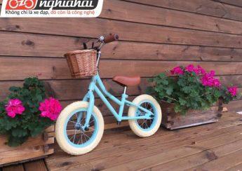 Các loại xe đạp trẻ em và cách chọn mua 3