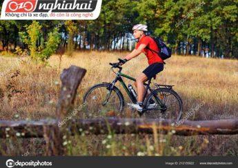 Những người thống trị lĩnh vực xe đạp leo núi 3