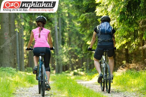 Tình yêu từ xe lăn đến xe đạp 1